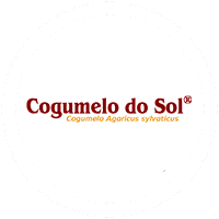 18_cogumelo-do-sol_clientes_yourocket_site